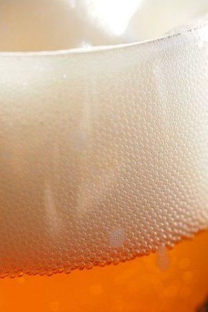 levure de bière issue de la fermentation de la bière